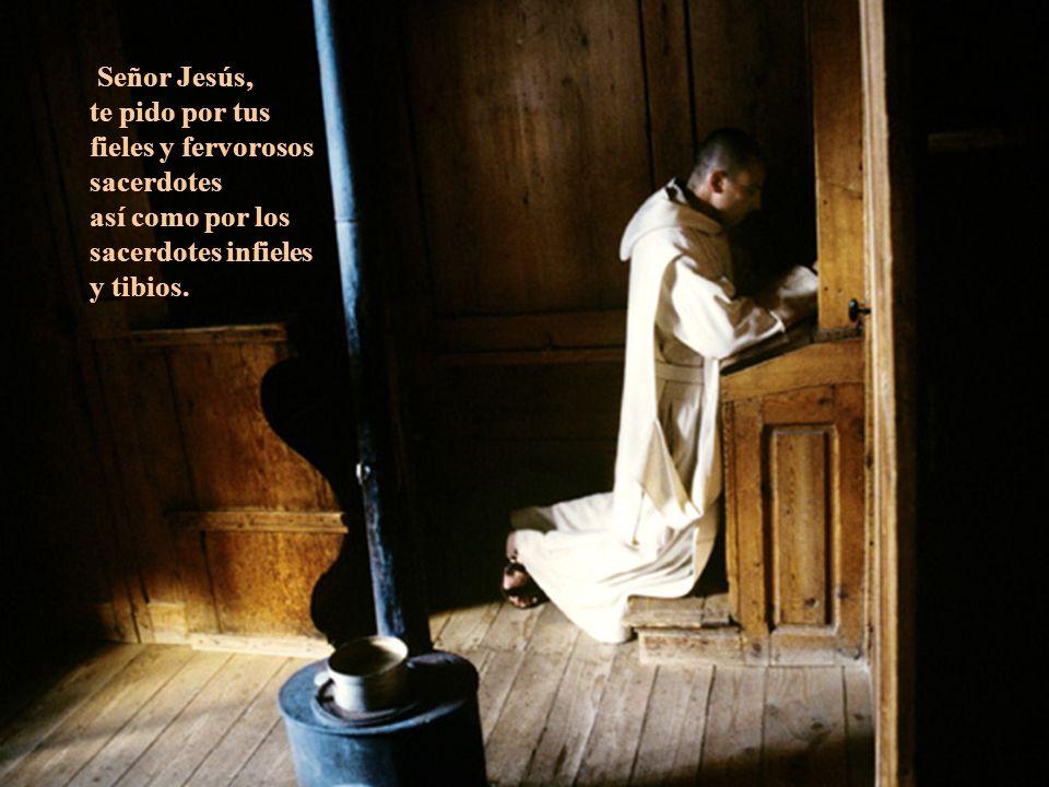 Señor Jesús, te pido por tus fieles y fervorosos sacerdotes.