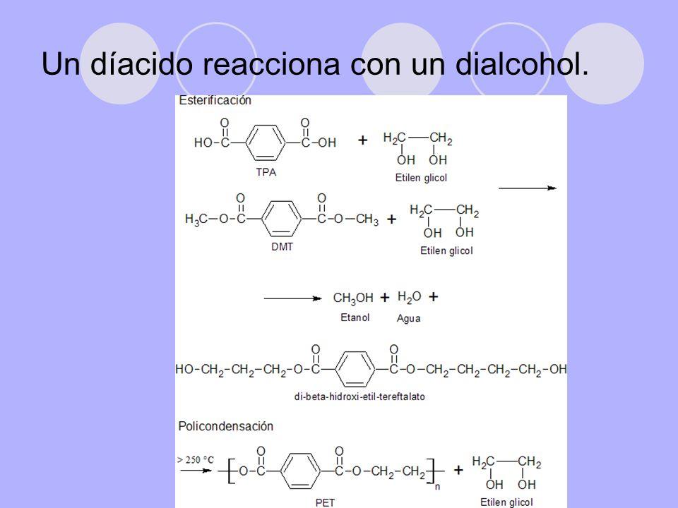Un díacido reacciona con un dialcohol.