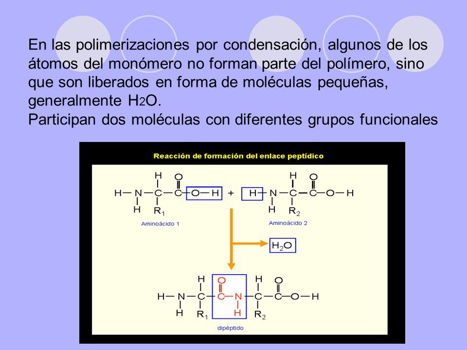 En las polimerizaciones por condensación, algunos de los átomos del monómero no forman parte del polímero, sino que son liberados en forma de moléculas pequeñas, generalmente H2O.