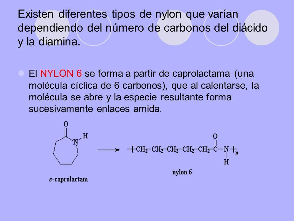 Existen diferentes tipos de nylon que varían dependiendo del número de carbonos del diácido y la diamina.