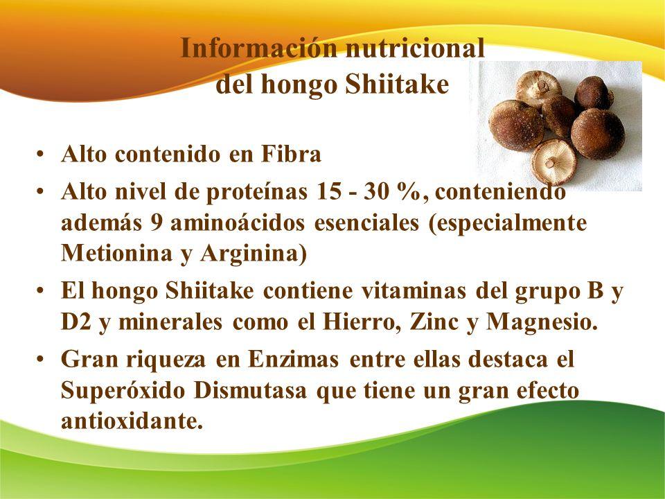 Información nutricional del hongo Shiitake