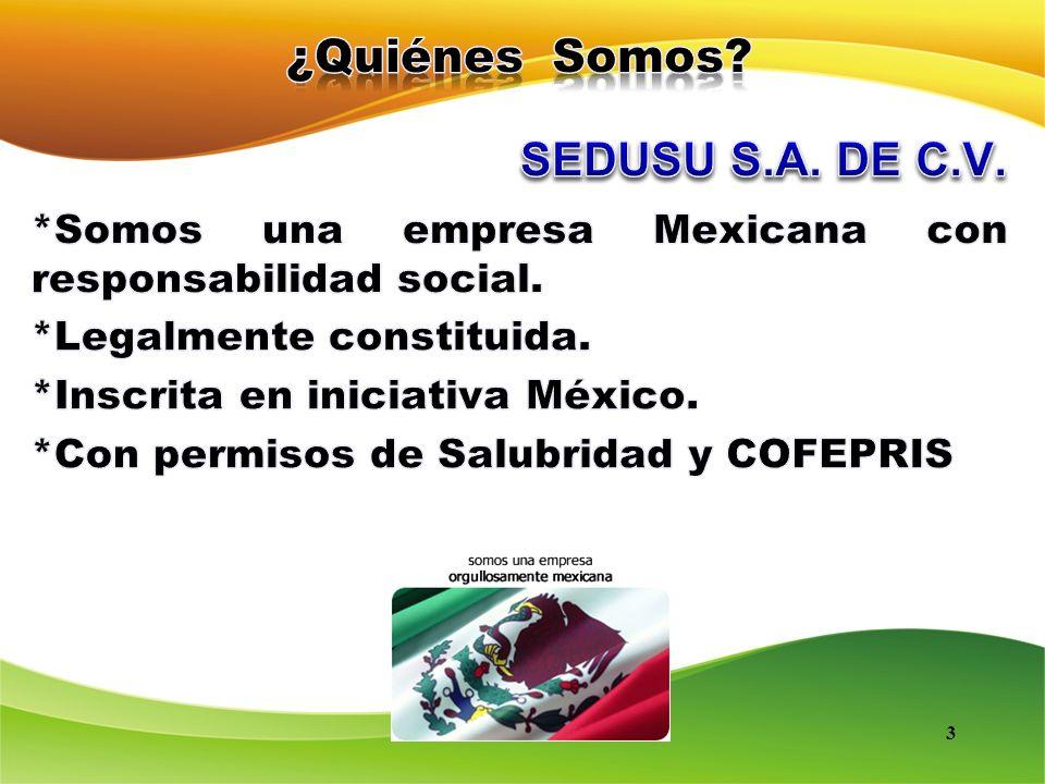 ¿Quiénes Somos SEDUSU S.A. DE C.V. *Somos una empresa Mexicana con responsabilidad social. *Legalmente constituida.