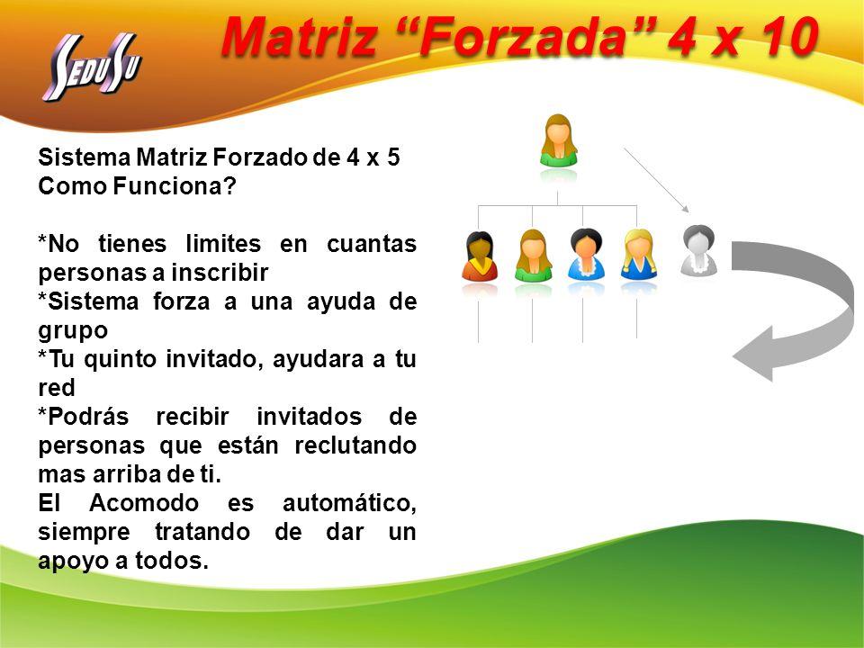 Matriz Forzada 4 x 10 Sistema Matriz Forzado de 4 x 5 Como Funciona