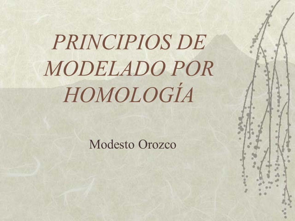 PRINCIPIOS DE MODELADO POR HOMOLOGÍA