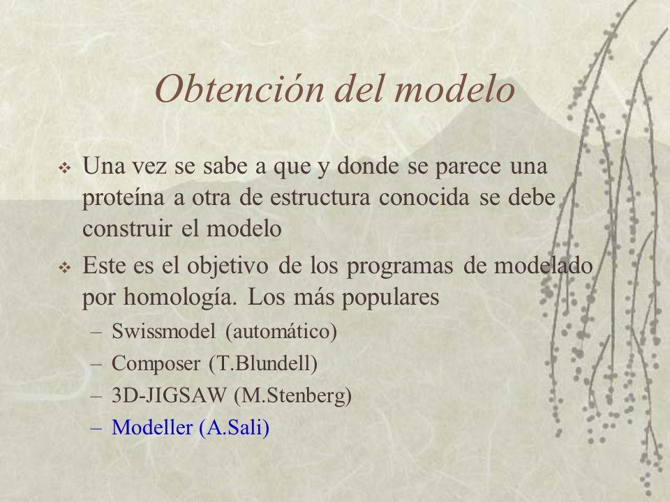 Obtención del modelo Una vez se sabe a que y donde se parece una proteína a otra de estructura conocida se debe construir el modelo.