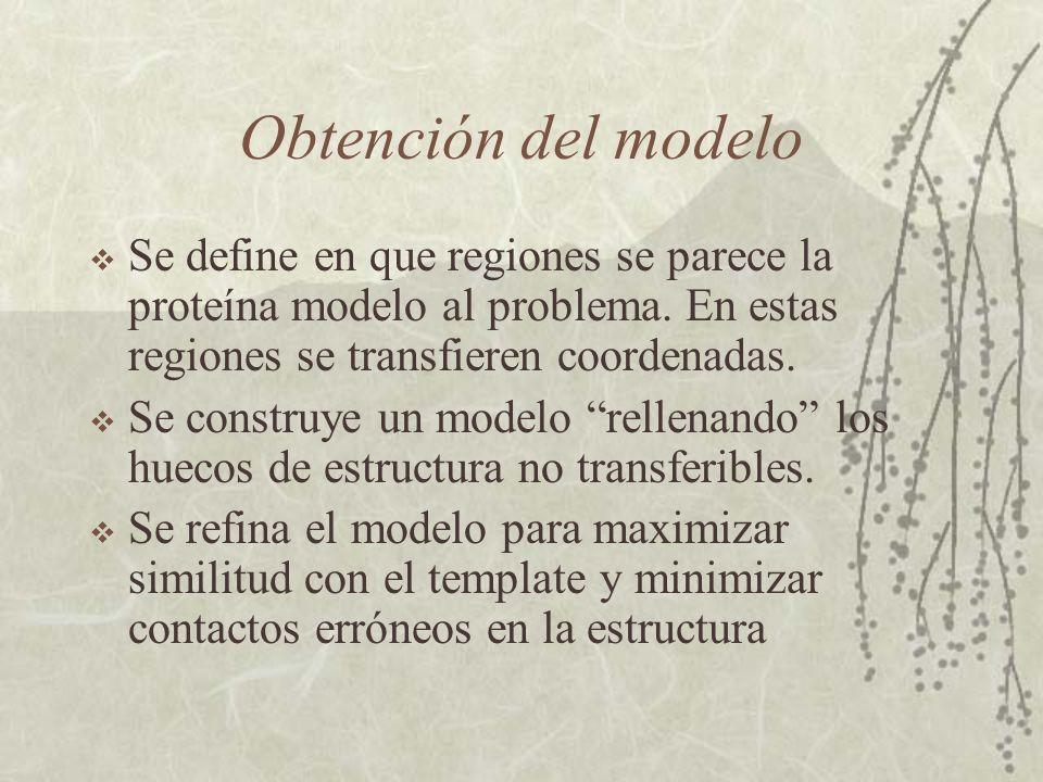 Obtención del modelo Se define en que regiones se parece la proteína modelo al problema. En estas regiones se transfieren coordenadas.