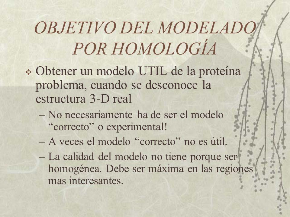 OBJETIVO DEL MODELADO POR HOMOLOGÍA