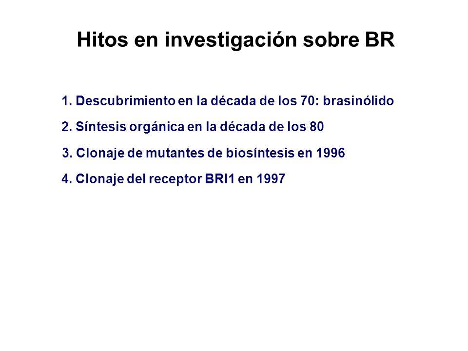 Hitos en investigación sobre BR
