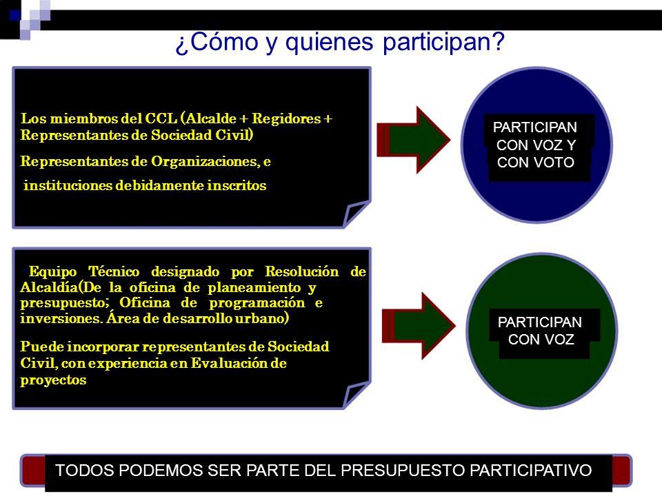 ¿Cómo y quienes participan