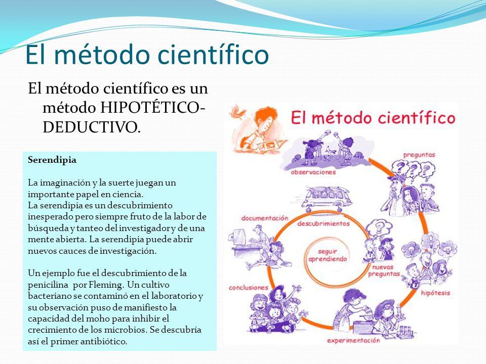 El método científico El método científico es un método HIPOTÉTICO-DEDUCTIVO. Serendipia.