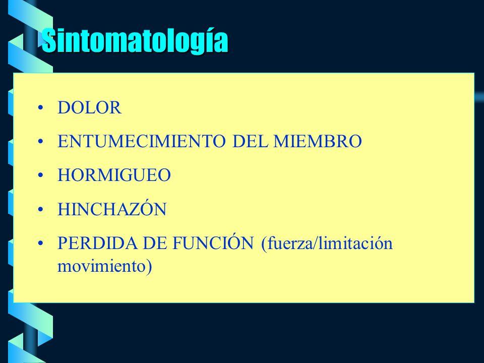 Sintomatología DOLOR ENTUMECIMIENTO DEL MIEMBRO HORMIGUEO HINCHAZÓN