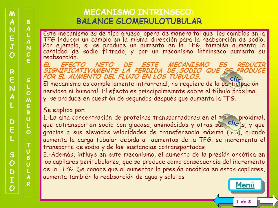 MECANISMO INTRINSECO: BALANCE GLOMERULOTUBULAR