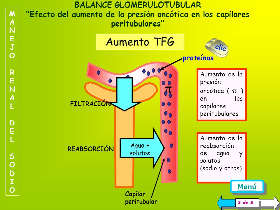  Aumento TFG TFG normal