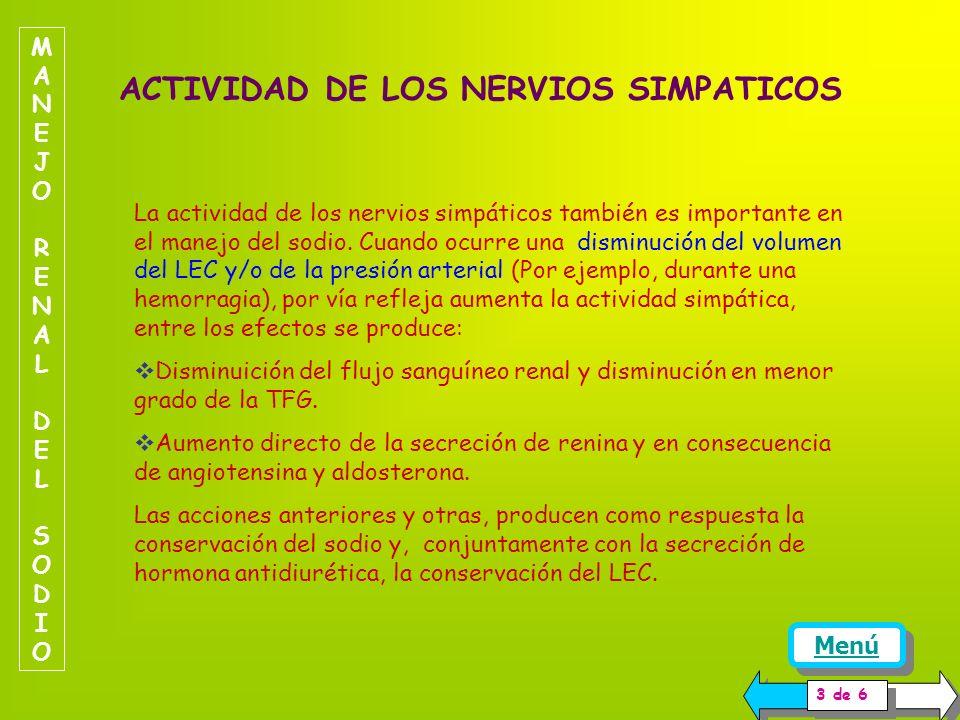 ACTIVIDAD DE LOS NERVIOS SIMPATICOS