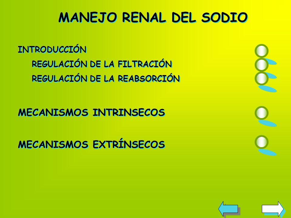 MANEJO RENAL DEL SODIO MECANISMOS INTRINSECOS MECANISMOS EXTRÍNSECOS