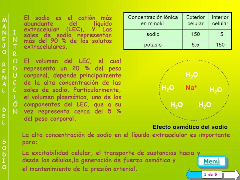Concentración iónica en mmol/L