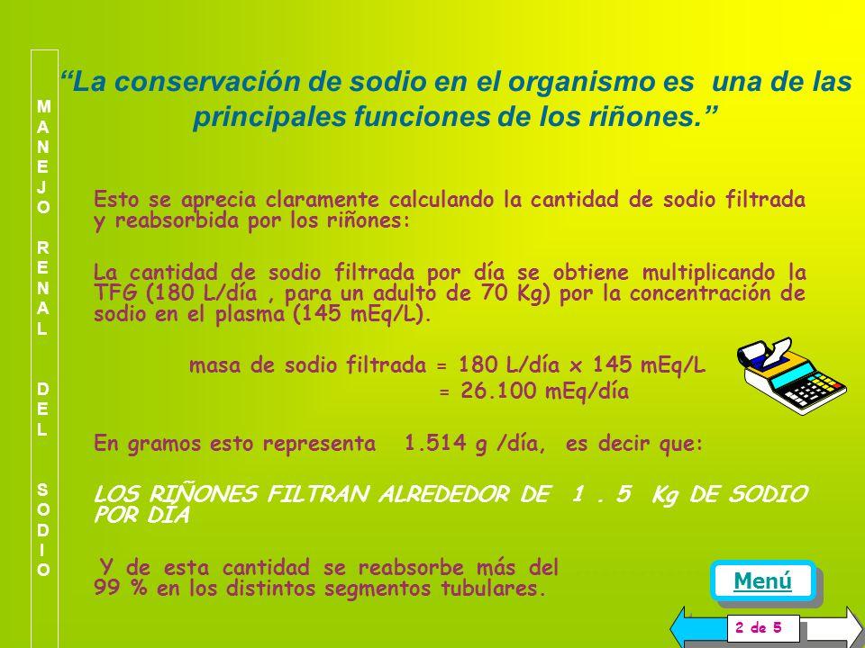 MANEJO RENAL DEL SODIO La conservación de sodio en el organismo es una de las principales funciones de los riñones.