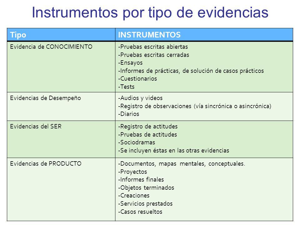 Instrumentos por tipo de evidencias