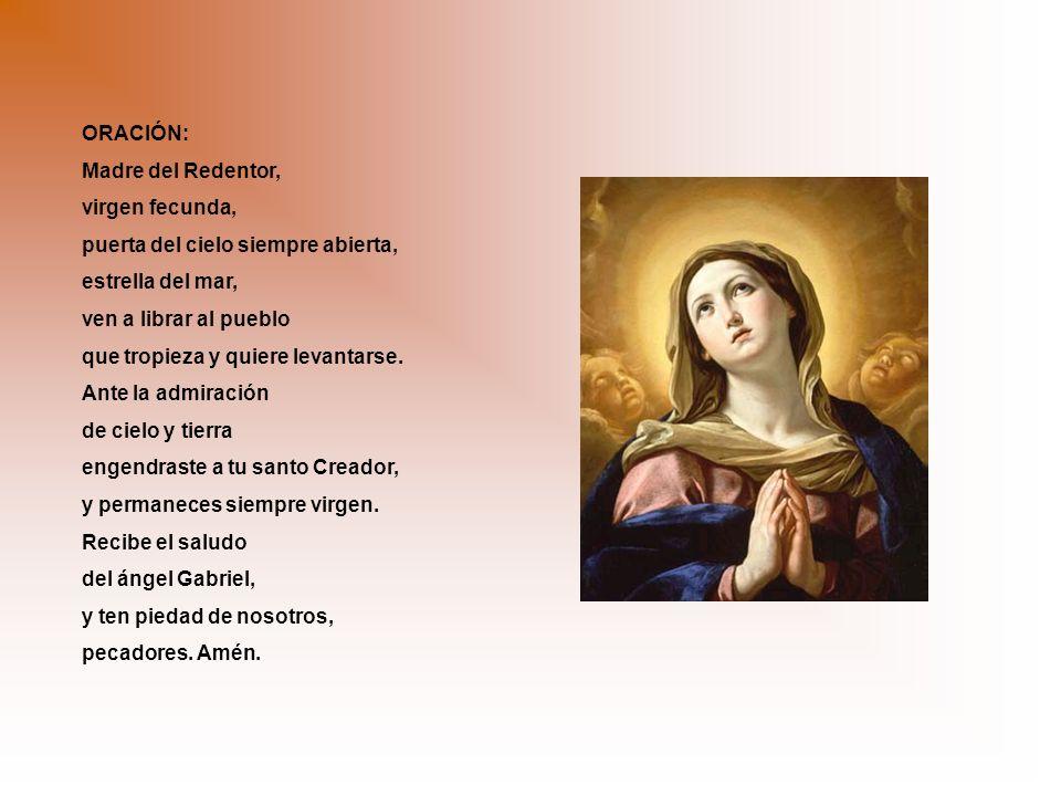ORACIÓN: Madre del Redentor, virgen fecunda, puerta del cielo siempre abierta, estrella del mar,