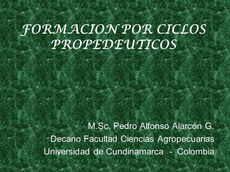 FORMACION POR CICLOS PROPEDEUTICOS