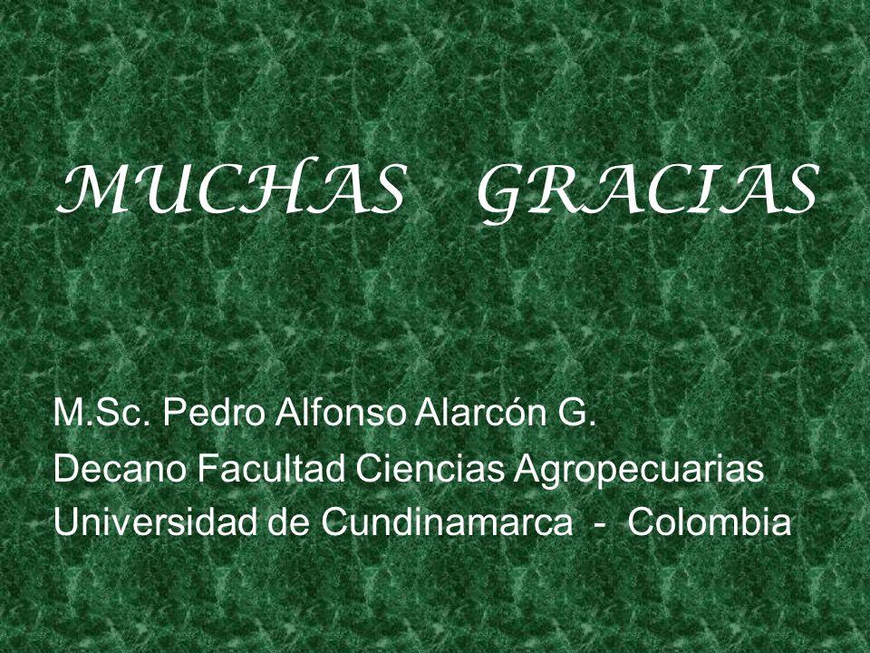 MUCHAS GRACIAS M.Sc. Pedro Alfonso Alarcón G.