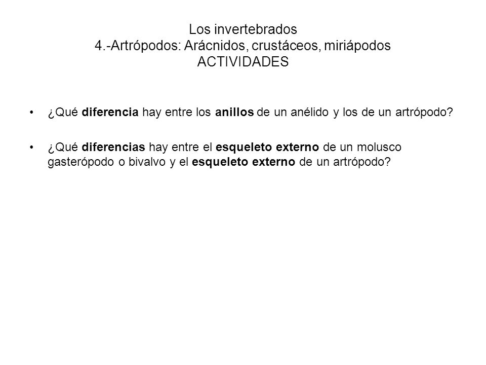 Los invertebrados 4.-Artrópodos: Arácnidos, crustáceos, miriápodos ACTIVIDADES