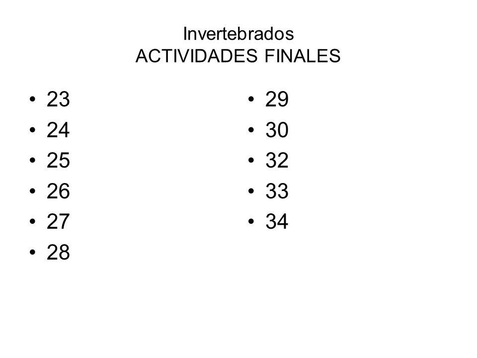 Invertebrados ACTIVIDADES FINALES