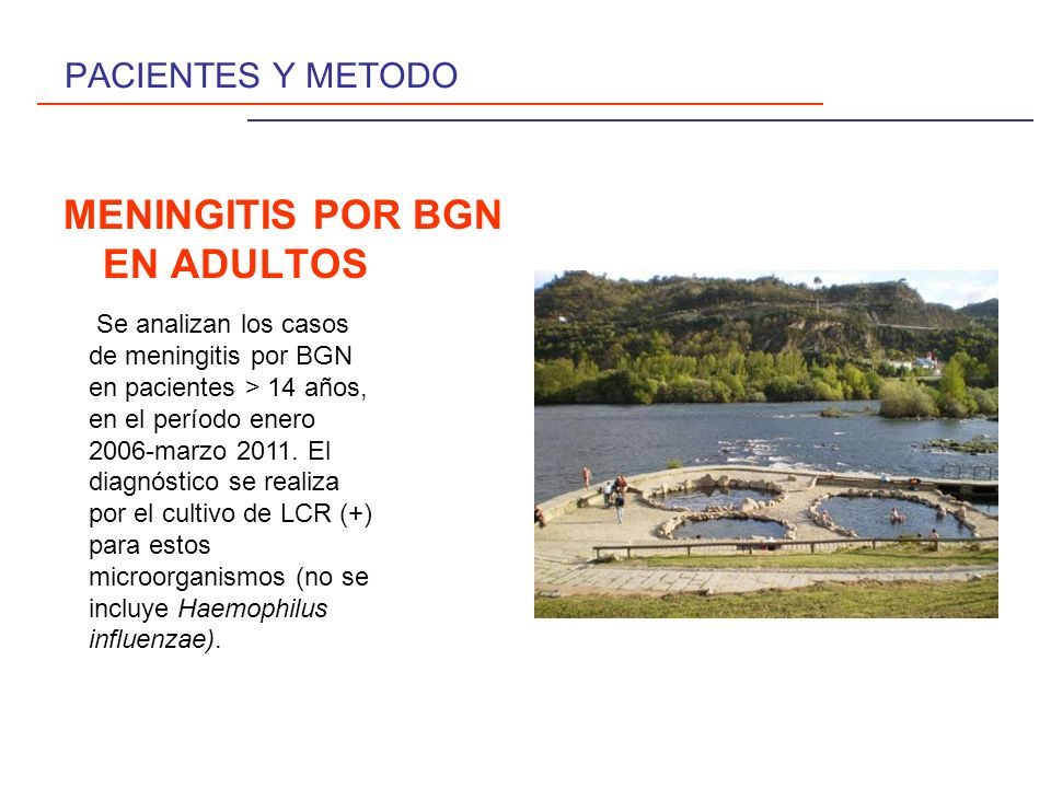 MENINGITIS POR BGN EN ADULTOS
