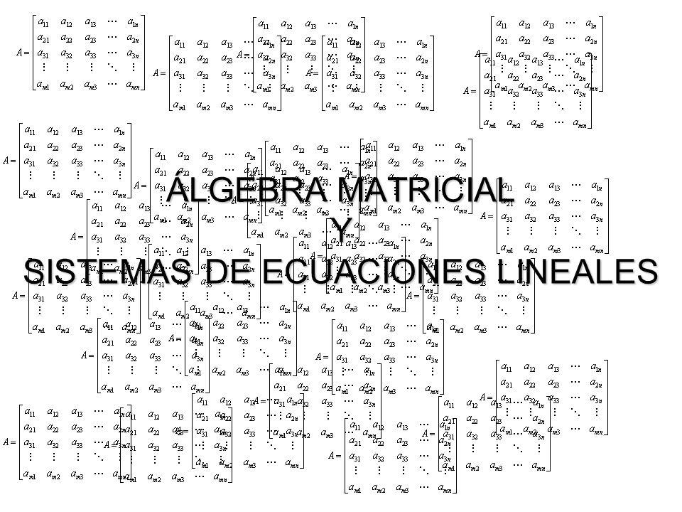ÁLGEBRA MATRICIAL Y SISTEMAS DE ECUACIONES LINEALES