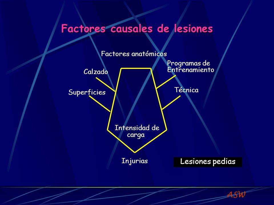 Factores causales de lesiones