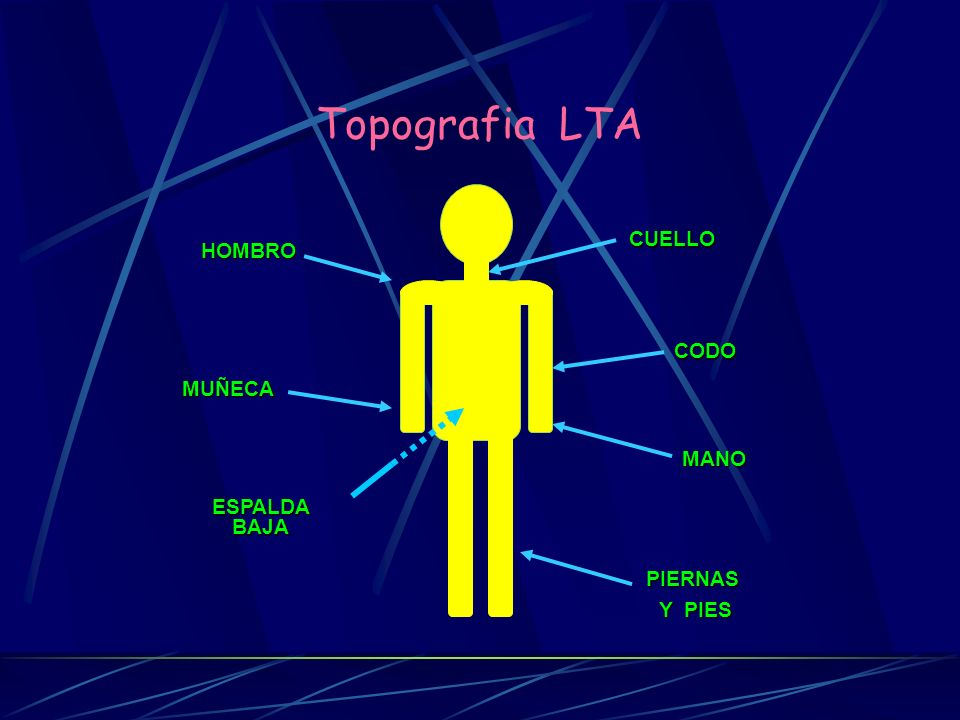 Topografia LTA MUÑECA CUELLO HOMBRO CODO MANO ESPALDA BAJA PIERNAS
