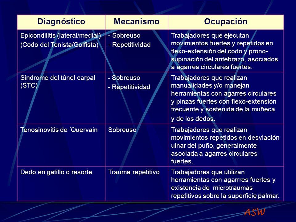 ASW Diagnóstico Mecanismo Ocupación Epicondilitis (lateral/medial)