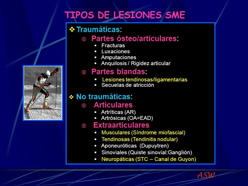 TIPOS DE LESIONES SME Partes ósteo/articulares: Partes blandas: