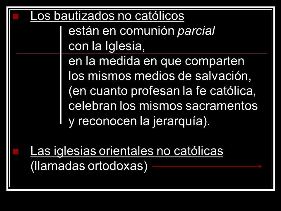 Los bautizados no católicos