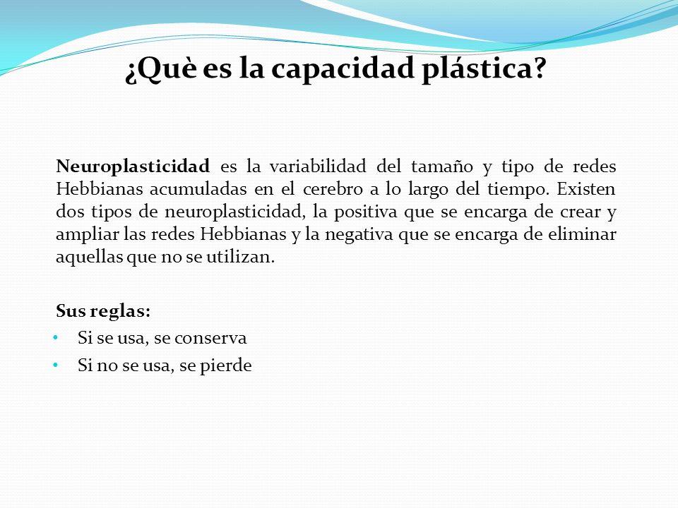 ¿Què es la capacidad plástica