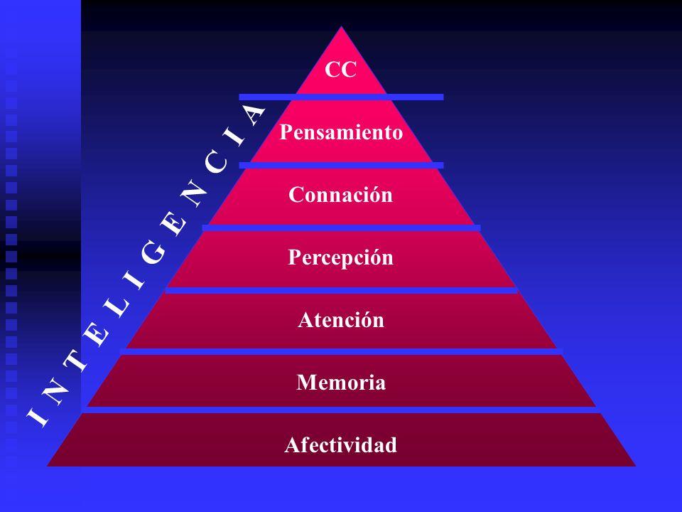 I N T E L I G E N C I A CC Pensamiento Connación Percepción Atención