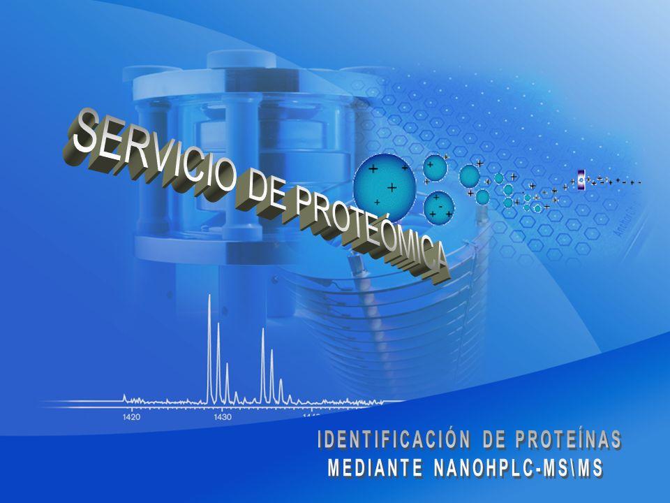 IDENTIFICACIÓN DE PROTEÍNAS MEDIANTE NANOHPLC-MS\MS