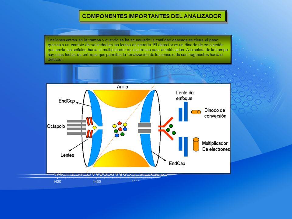 COMPONENTES IMPORTANTES DEL ANALIZADOR