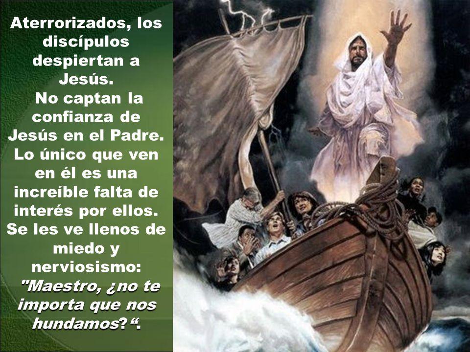 Aterrorizados, los discípulos despiertan a Jesús.