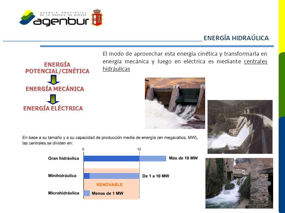 ENERGÍA POTENCIAL/CINÉTICA