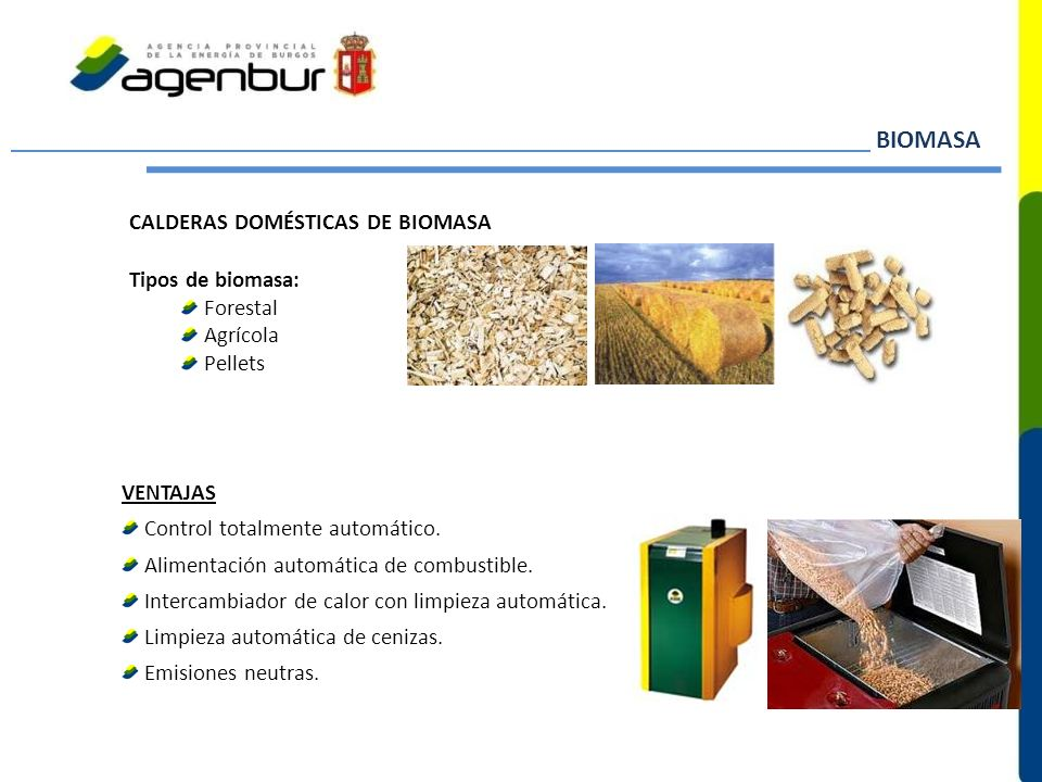 BIOMASA CALDERAS DOMÉSTICAS DE BIOMASA Tipos de biomasa: Forestal