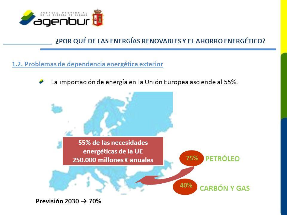 55% de las necesidades energéticas de la UE