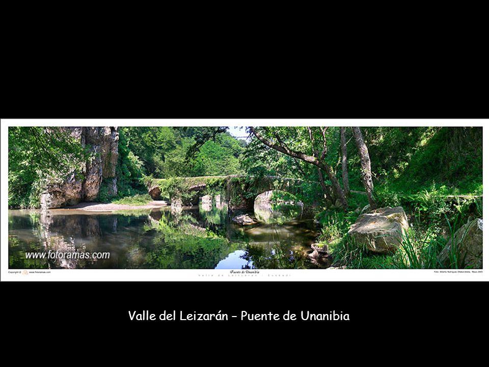 Valle del Leizarán – Puente de Unanibia