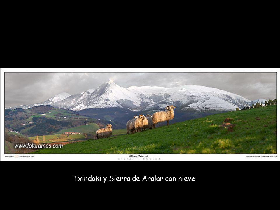Txindoki y Sierra de Aralar con nieve