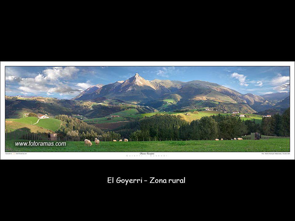 El Goyerri – Zona rural