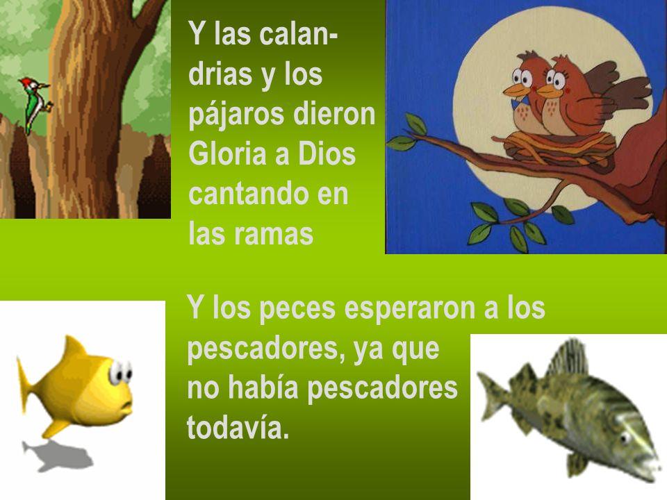 Y las calan- drias y los. pájaros dieron. Gloria a Dios. cantando en. las ramas. Y los peces esperaron a los.