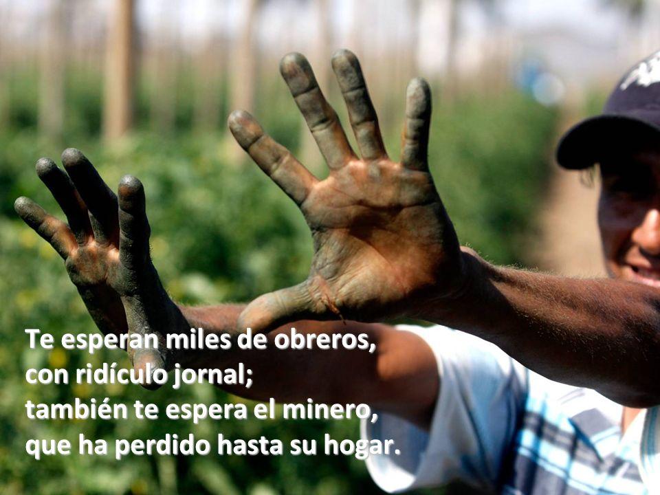 Te esperan miles de obreros, con ridículo jornal; también te espera el minero, que ha perdido hasta su hogar.