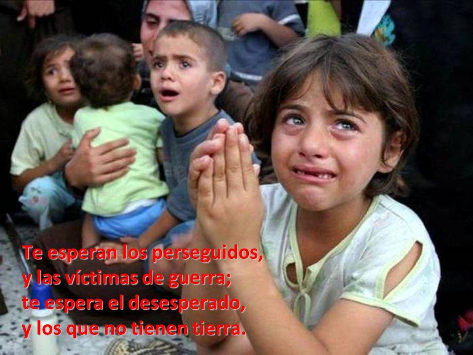 Te esperan los perseguidos, y las víctimas de guerra; te espera el desesperado, y los que no tienen tierra.