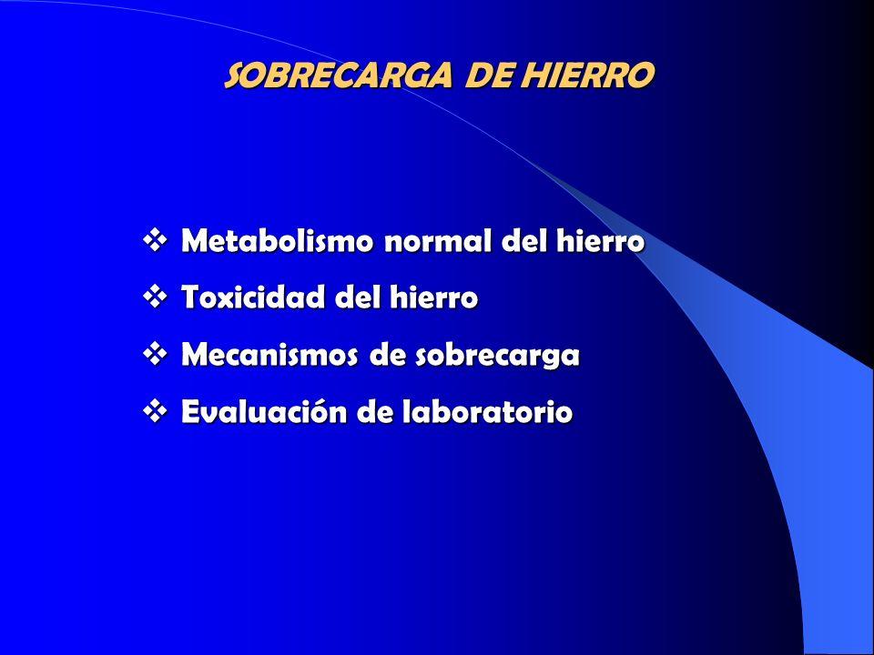 SOBRECARGA DE HIERRO Metabolismo normal del hierro
