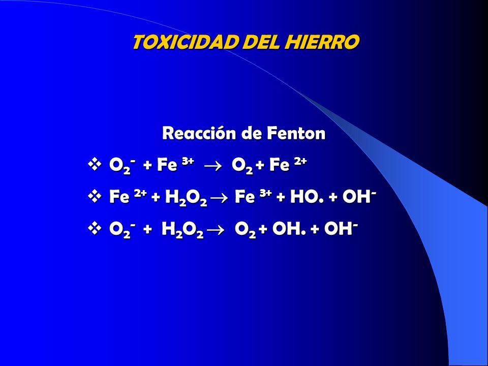TOXICIDAD DEL HIERRO Reacción de Fenton O2- + Fe 3+  O2 + Fe 2+